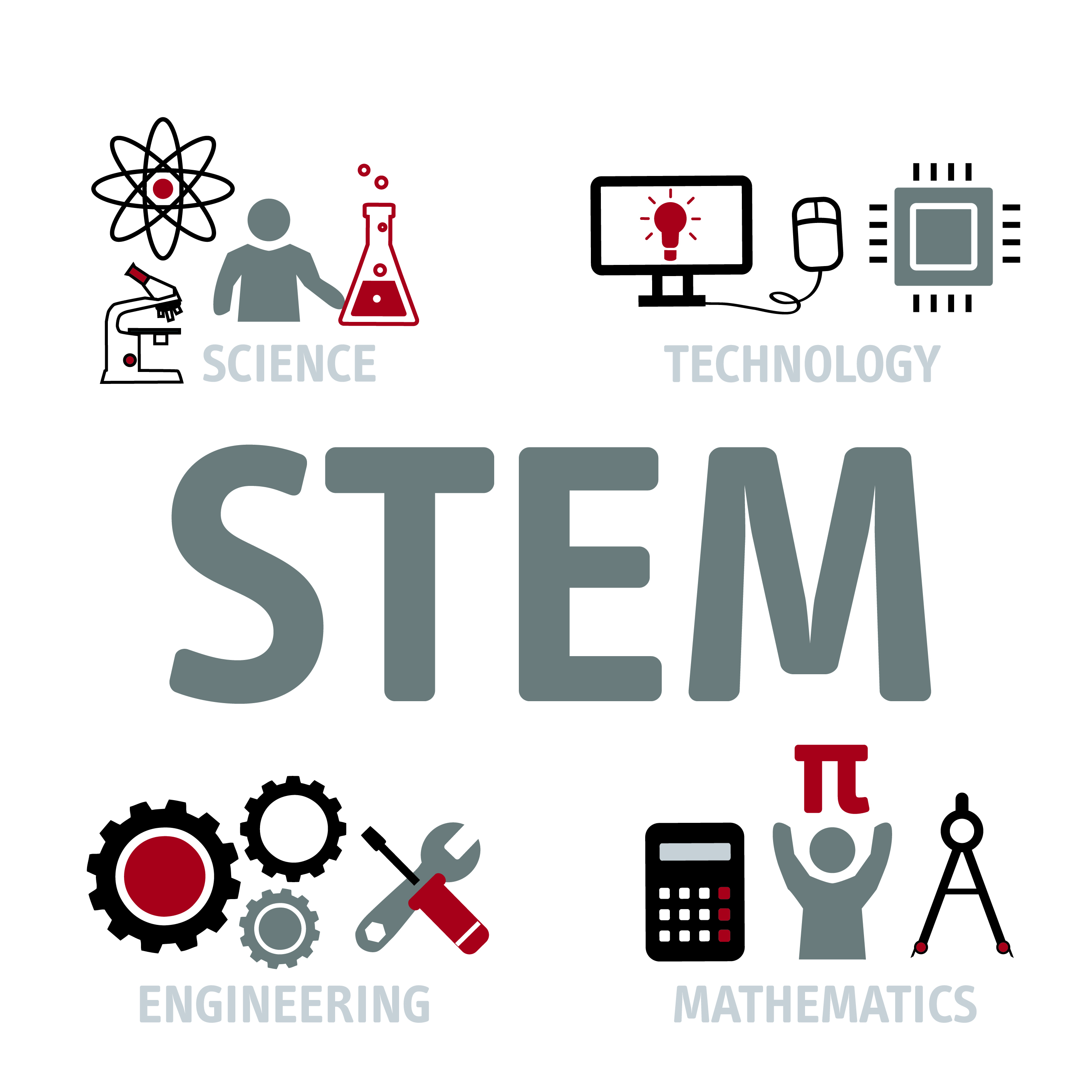 STEM intro graphic